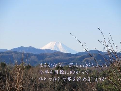 IMG_7628s.JPG